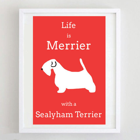 Sealyham,Terrier,Print,Life is Merrier with a Sealyham Terrier Print, Sealyham Terrier Print, Sealyham Terrier Art, Sealyham Terrier Poster