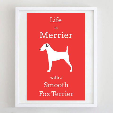 Smooth,Fox,Terrier,Print,Life is Merrier with a Smooth Fox Terrier, Smooth Fox Terrier Print, Smooth Fox Terrier Art, Smooth Fox Terrier Poster