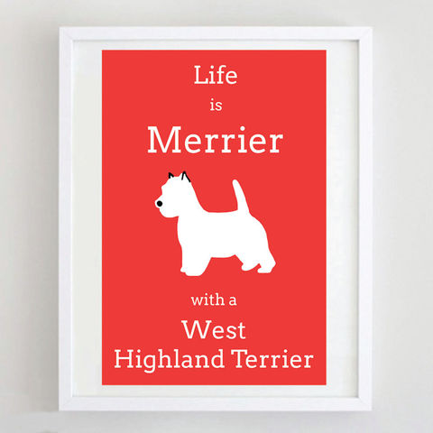 West,Highland,Terrier,Print,Life is Merrier with a West Highland Terrier, West Highland Terrier Print, Westie Print, Westie Art, Westie Poster, West Highland Terrier Art