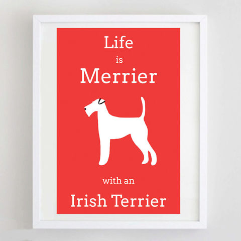 Irish,Terrier,Print,Life is Merrier with an Irish Terrier Print, Irish Terrier Gift, Irish Terrier Picture, Irish Terrier Print, Irish Terrier Poster