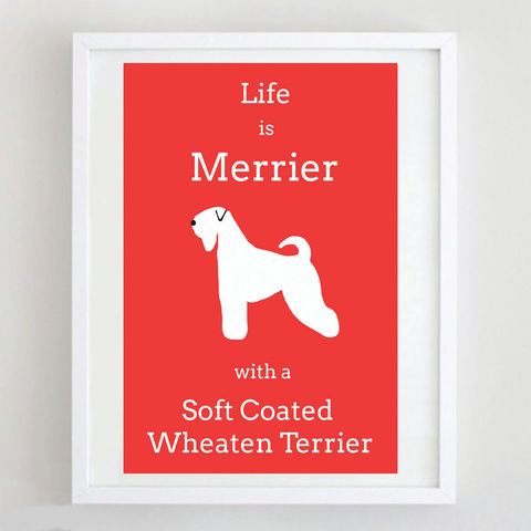 Soft,Coated,Wheaten,Terrier,Print,Life is Merrier with a Soft Coated Wheaten Terrier, Wheaten Terrier Art