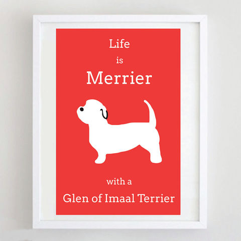 Glen,of,Imaal,Terrier,Print,Life is Merrier with a Glen of Imaal Terrier, Glen of Imaal Terrier Art