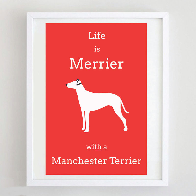 Manchester Terrier Print - product image