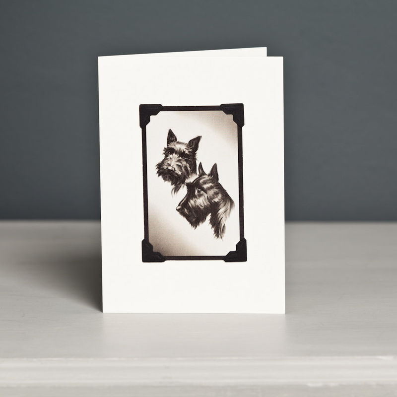 Scottish Terrier Card   - product image