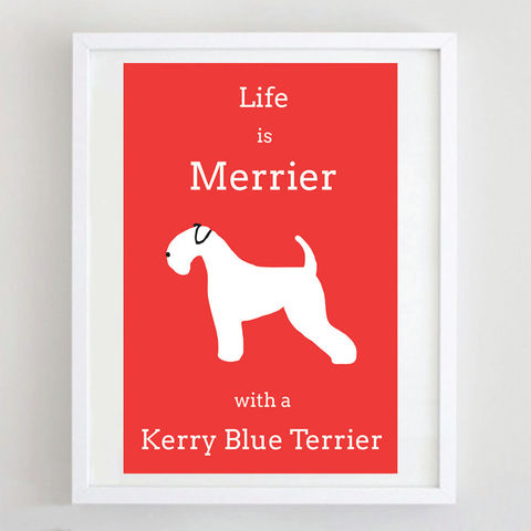 Kerry,Blue,Terrier,Print,Life is Merrier with a Kerry Blue Terrier, Kerry Blue Terrier Art
