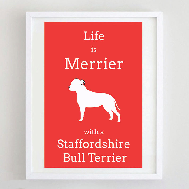 Staffordshire Bull Terrier Print  - product image