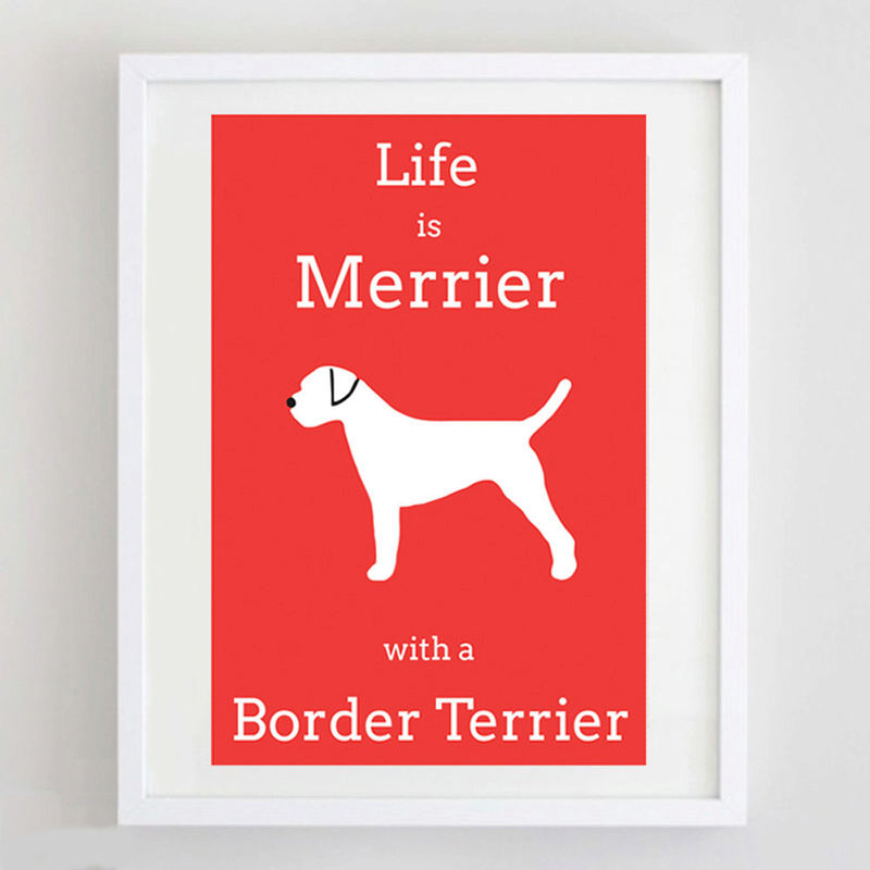 Border Terrier Print - product image