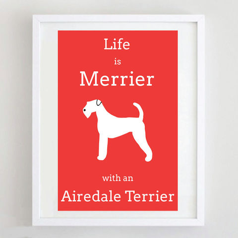 Airedale,Terrier,Print,Life is Merrier with an Airedale Terrier, Airedale Terrier Print