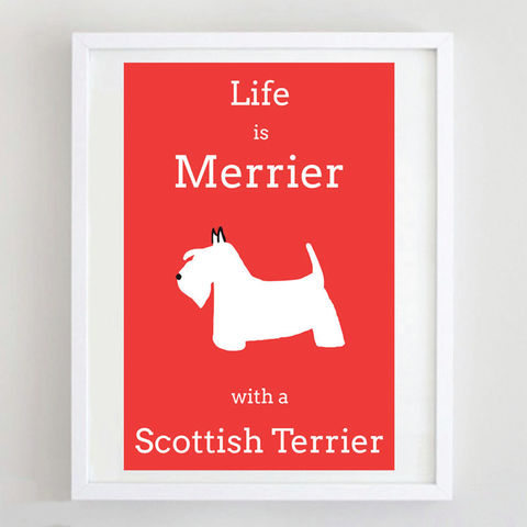 Scottish,Terrier,Print,Life is Merrier with a Scottish Terrier, Scottish Terrier Art