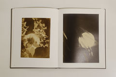 The Chinese Photobook Collection: Luo Bonian - product images 6 of 12