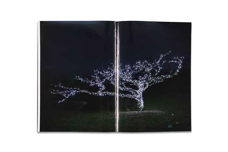 White Night/白夜 (2nd Edition, Signed) - product image