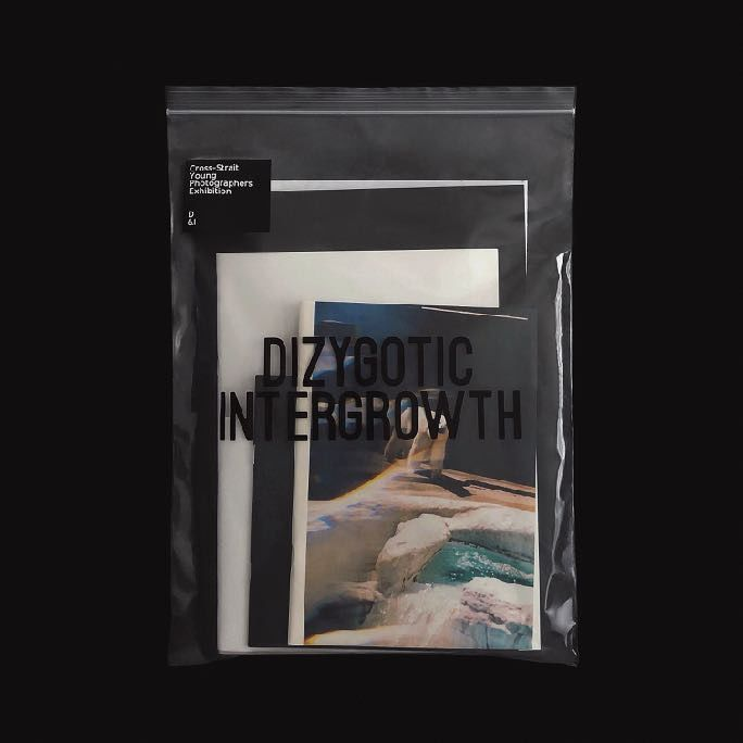 Dizygotic Intergrowth/異卵共生 - product image