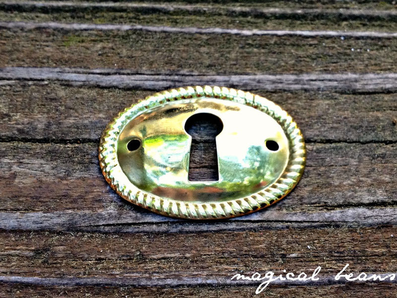 Vintage NOS Oval Key-Hole Back-Plate in Polished Brass - product images  of