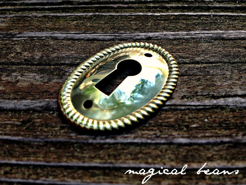 Vintage NOS Oval Skeleton Key-Hole Back-Plate in Polished Brass  - product images  of