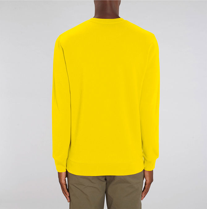 Breton Yellow - product images  of