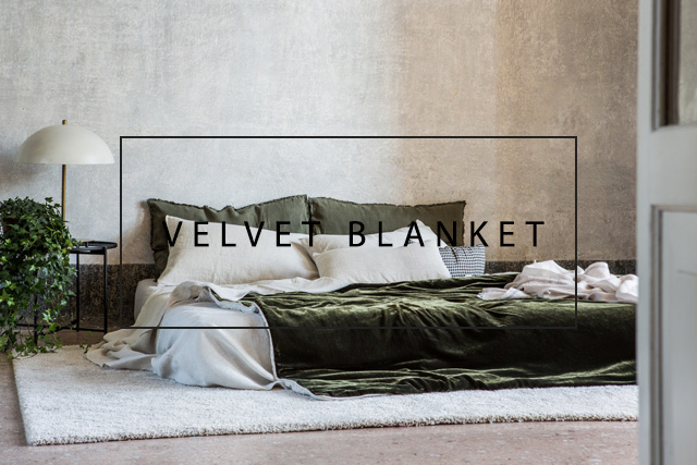 luxurious velvet blanket
