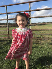 Smocked,Dresses,|,Baby,Farm,Clothes,Girl,412235,-BB029,Farm_Baby_Clothes, Farm_Animal_Baby_Clothes, Baby Girl Clothes - Smocked Dresses Baby Girl - Smocking - Smock Dress - Baby Girl Smock- Childrens Smock - Baby Clothes