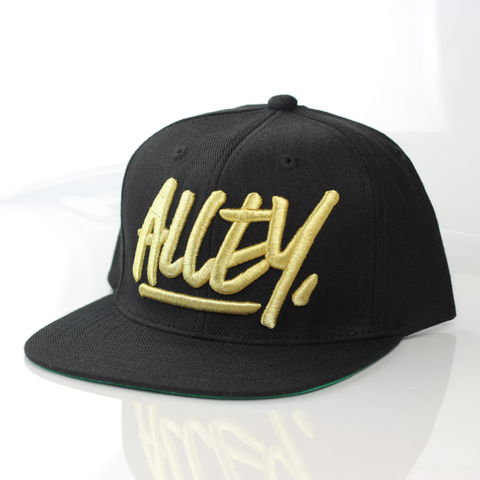 Alley,Gold,Logo,Snapback,Karl Alley, Vogue, Metal, plate, snapback, hat, boy london