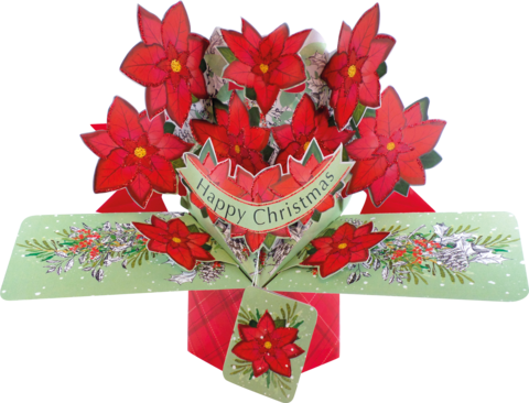 Second,Nature,Xmas,Pop,Ups,-,Poinsettias,Second Nature Pop Ups, Original Pop-ups, Pop up greeting card, Pop up, Pop-up, Pop-ups, Christmas Pop Up, Xmas Pop Up, Poinsettias
