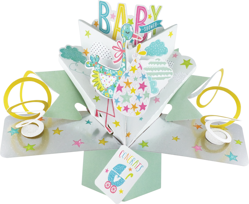 Second Nature Pop Ups - Baby Shower (Stork) - product images