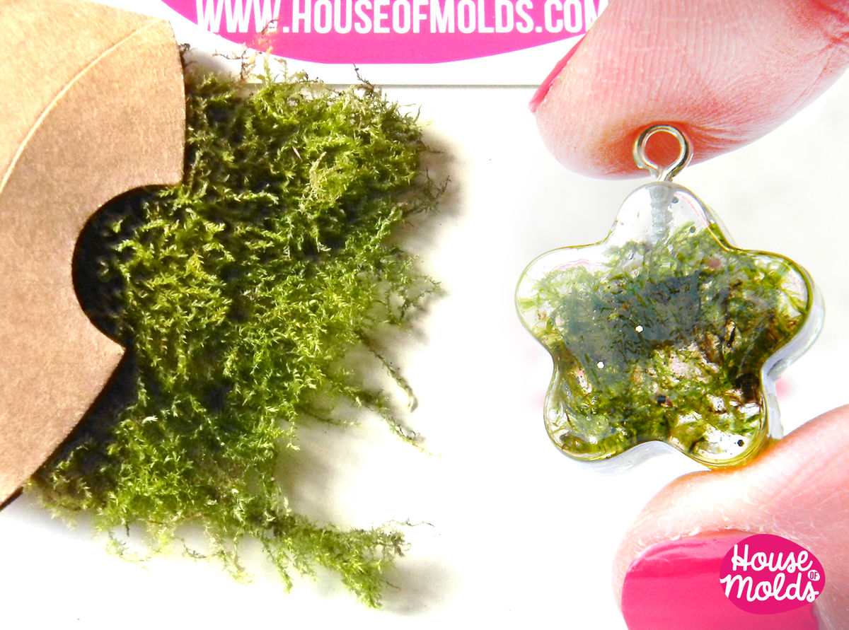 Dryed Natural Green Moss Ideal For Any Type Of Resin Inclusions Sbooking Home