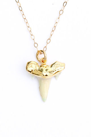 SHARK,TOOTH,NECKLACE,dipped,in,24k,gold,and,fill,chain,Jewelry, shark tooth, fossil, gold, shark tooth necklace
