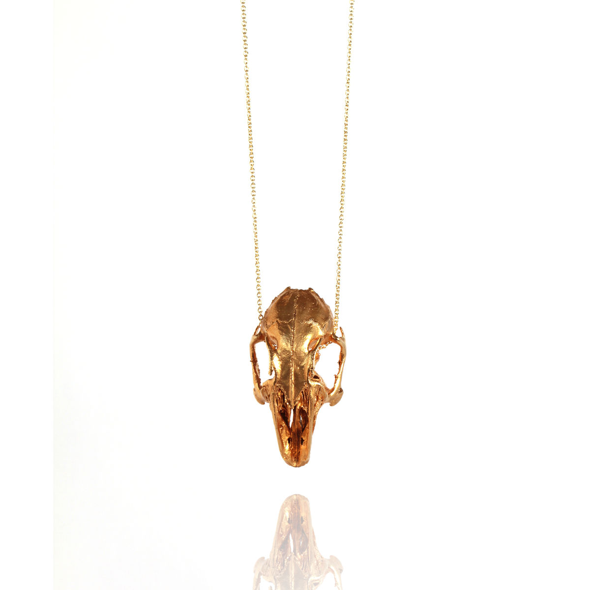 Lucky Rabbit Skull - product images  of