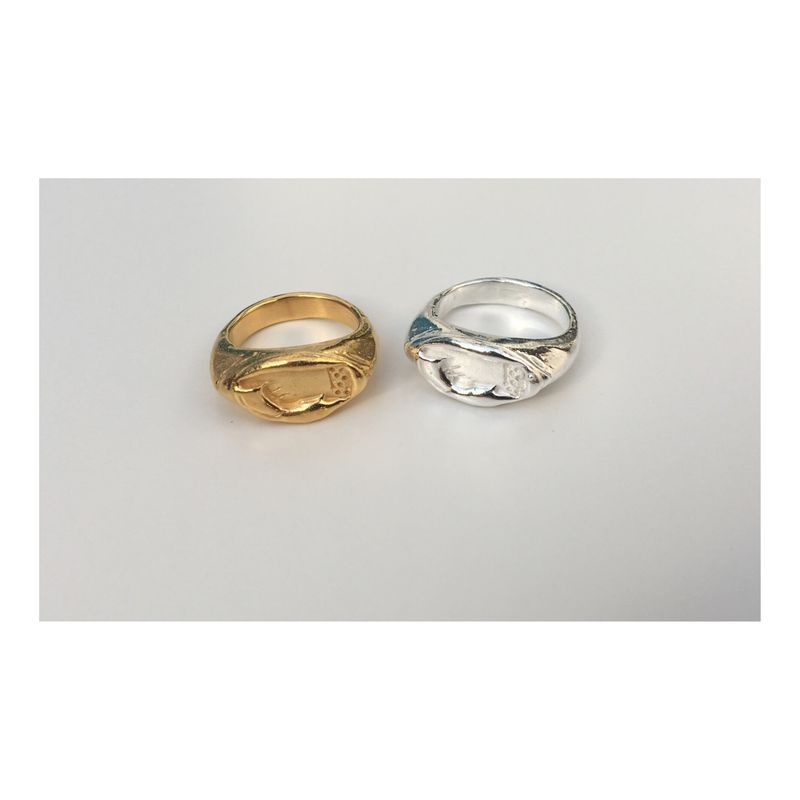 Navigate Signet Rings - Silver & Gold - product images  of