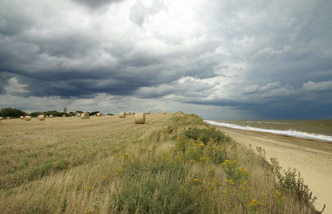 Beach,&,Wheat,Fields,at,Covehithe,,Suffolk,Covehithe, Suffolk coast, Covehithe view, Covehithe print, Covehithe photo print, Suffolk, Covehithe Suffolk, wheat fields, stormy day print,