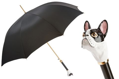 FRENCH,BULLDOG,UMBRELLA