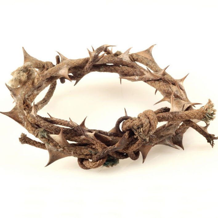 Crown Of Thorns 1