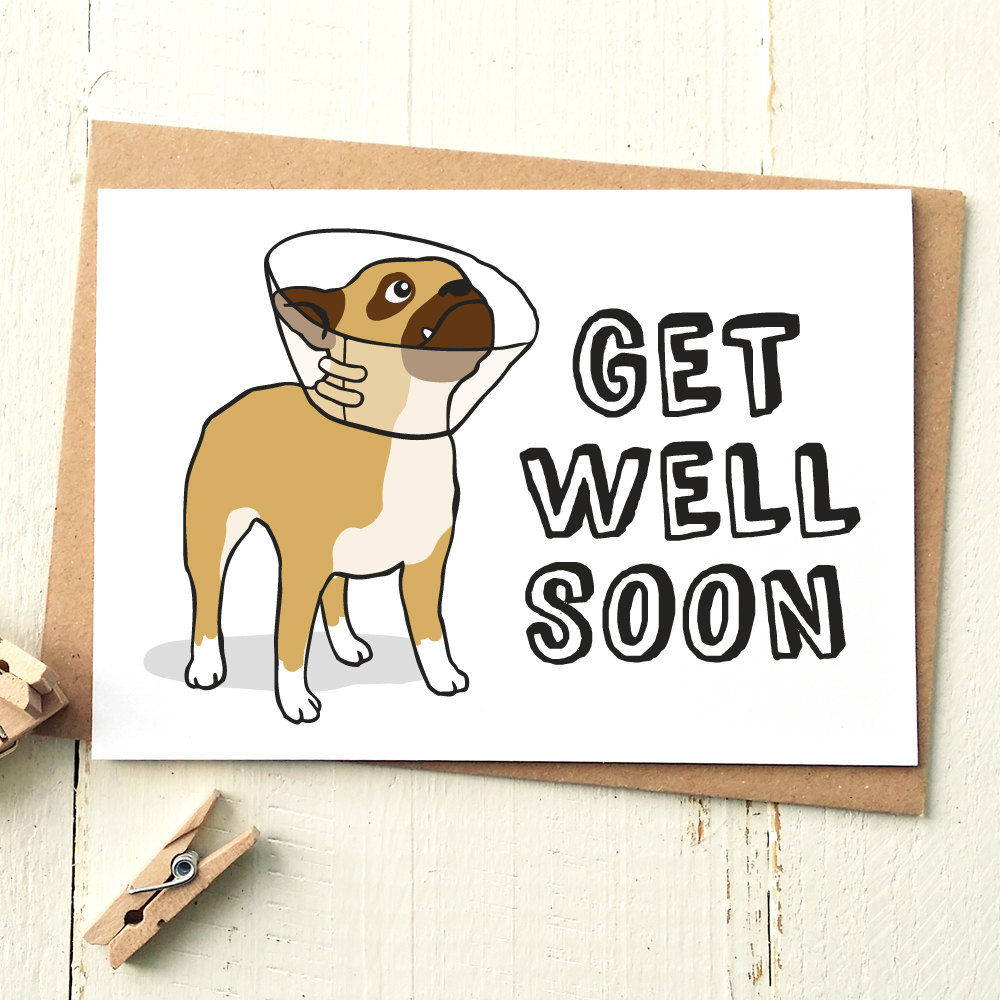 Get Well Soon Card Finch And The Fallow