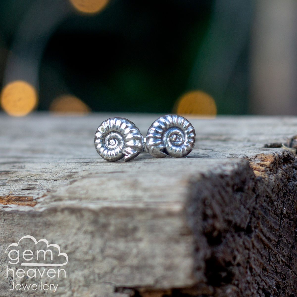 Ammonite post earrings - product images  of