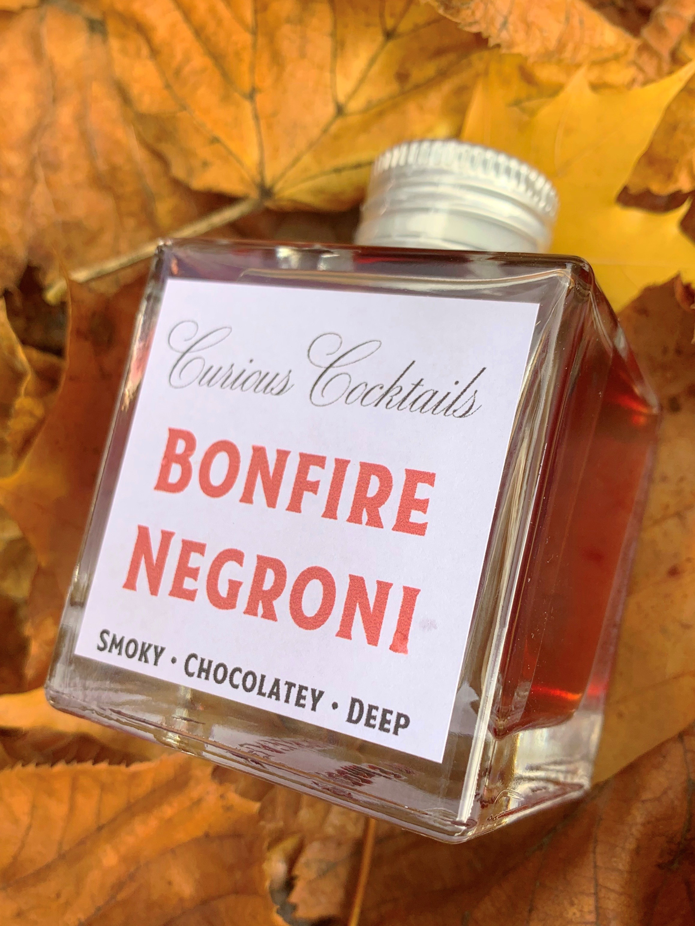 Hidden Curiosities Bonfire Negroni Premix Cocktail