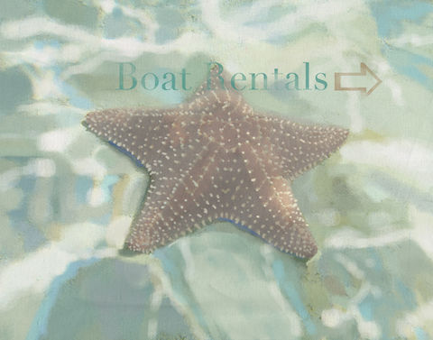 Boat,Rentals,Sign,starfish,laura ashley,boat rentals,brad burns,seascape,beach sign,beach art, shabby chic sign,french beach cottage art,beach bleached art,brad burns art,sea,water,ocean,brine,whitewater,sea foam, abstract,impressionism