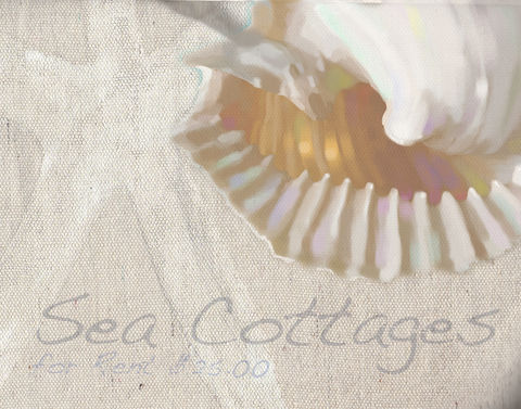 Sea,Cottages,for,Rent,vintage,conch, shell,conch shell, french cottage,beach cottage,laura ashley,boat rentals,brad burns,seascape,beach sign,beach art, shabby chic sign,french beach cottage art,beach bleached art,brad burns art,sea,water,ocean,brine,whitewater,sea foam, abstr