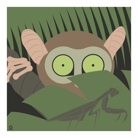 I,See,You,Tarsier,10x10,Giclee,Print,nature,Design,spring,science,tarsier,jungle,animals