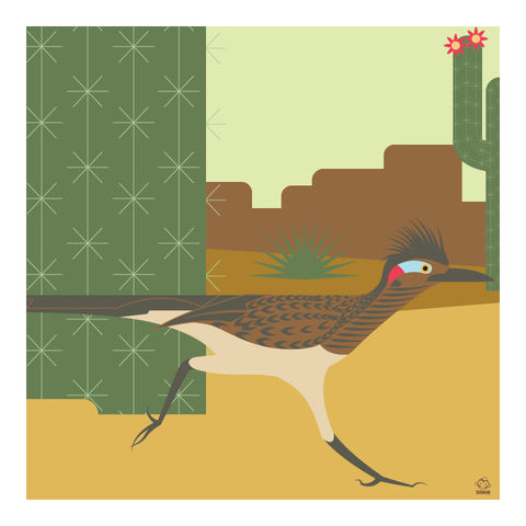 Beep,Roadrunner,10x10,Giclee,Print,nature,Design,science,desert,bird,arizona