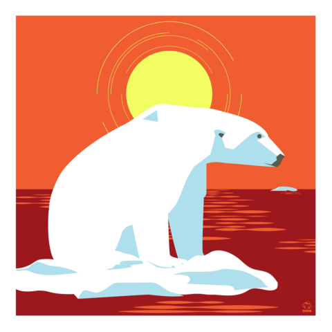 Waiting,For,Winter,Polar,Bear,10x10,Giclee,Print,nature,Design,polar bear,bear,ice,north pole,Sun,melt