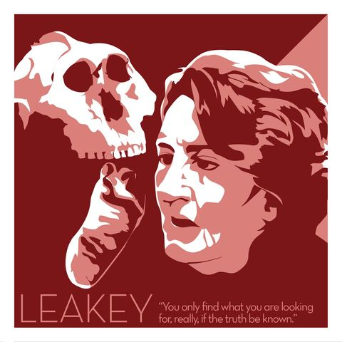 Mary,Leakey,-,Eureka,Giclee,print,giclee, print, science, mary leakey, evolution, fossil, vector art