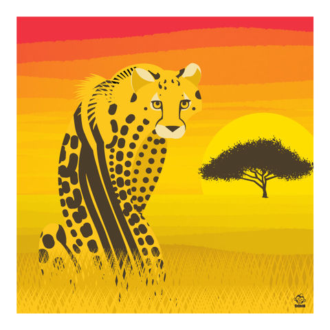 King,Cheetah,10x10,Giclee,Print,nature,Design,spring,science,cheetah, king cheetah, chester cheetah, summer, sunset, hot
