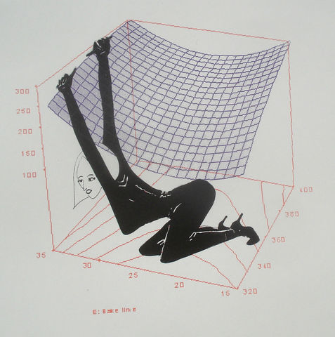 Trapped,In,3D,by,Mary,Rouncefield,screenprints, art, maths, curves