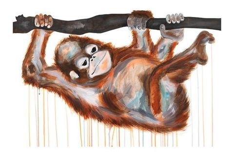 Baby,Orangutan,by,Sophie,Long,Signed,limited,edition,print,Giclee print, print, orangutan, art, affordable art, Sophie Long
