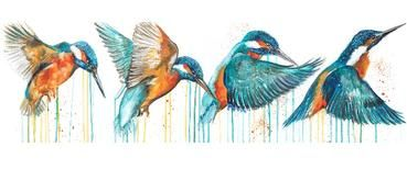 In,Flight,by,Sophie,Long,Signed,limited,edition,print,Giclee Print, Kingfisher, British birds,  art, affordable art, Sophie Long