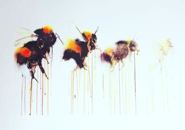 Dying,Out,A2,Screen,Print,(of,100),Screen Print, Bee, Bees, Bumble Bees,,  art, affordable art, Sophie Long