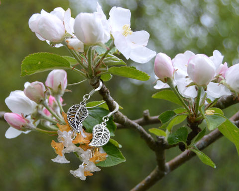 Orange,blossom,earrings,-,sweet,lolita,fairy,jewellery,spring,flower,dangle,Jewelry,Earrings,faery,fairy_earrings,orange_blossom_earrings,orange_flower_earrings,forest_earrings,forest_fairty_jewelry,sweet_lolita)earrings,flower_earrings,flower_dangle_earrings,orange_blossom_jewelry,faerie_woodland_earrings,mori_girl,orange_and_wh