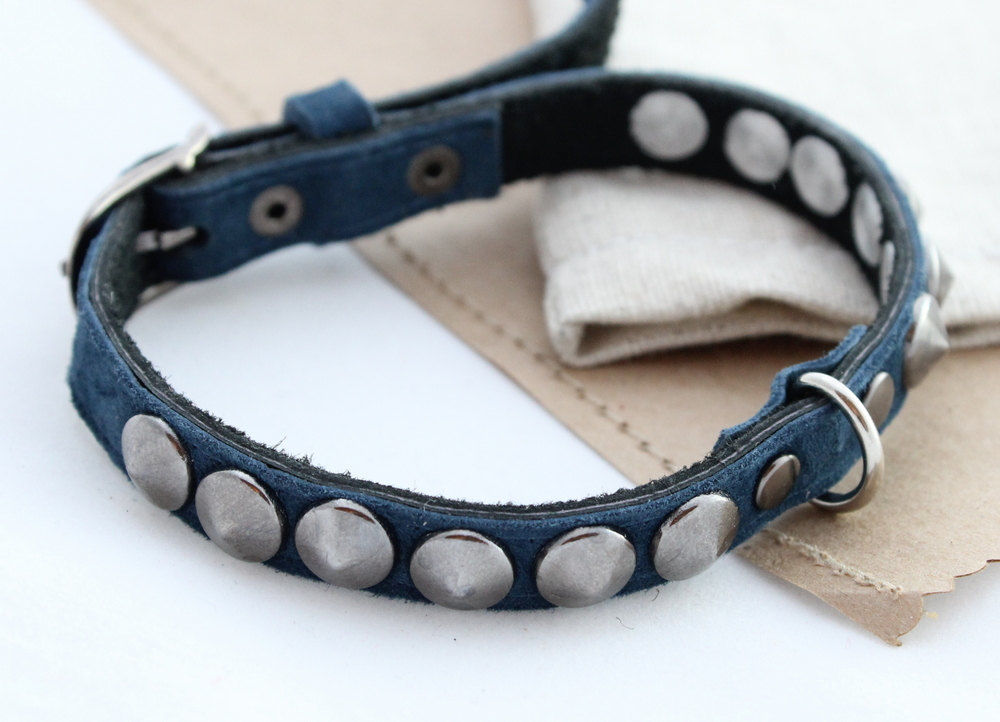 Leather dog collars blue & beige - product images  of