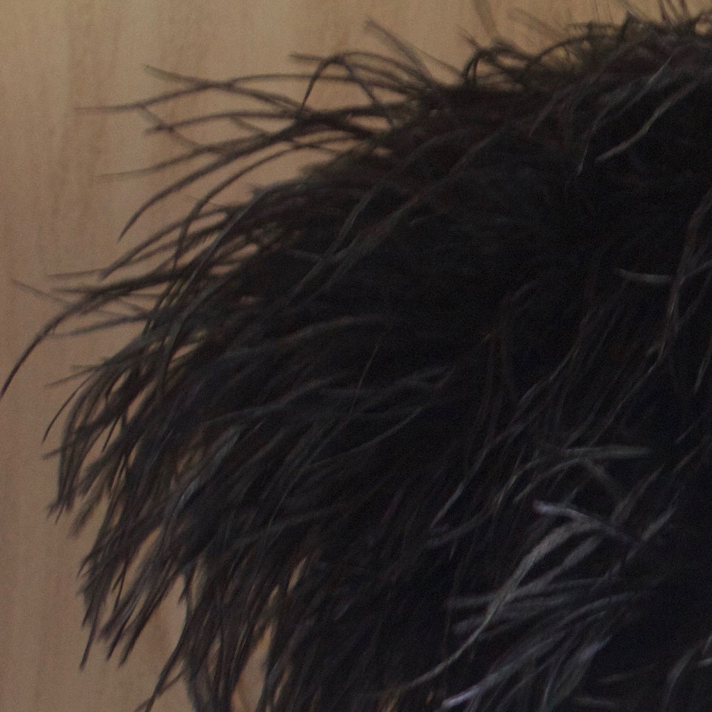 Black Feather Bolero - Luxury Ostrich Feather - product images  of