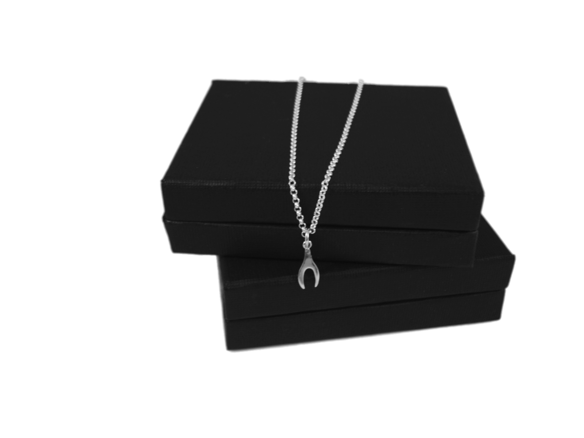 WISHBONE SILVER CHARM NECKLACE - product images  of