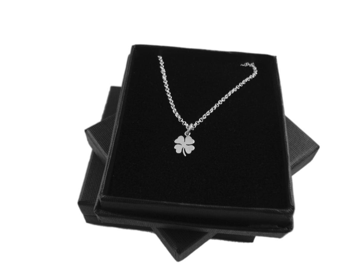 CLOVER SILVER CHARM NECKLACE - product images  of